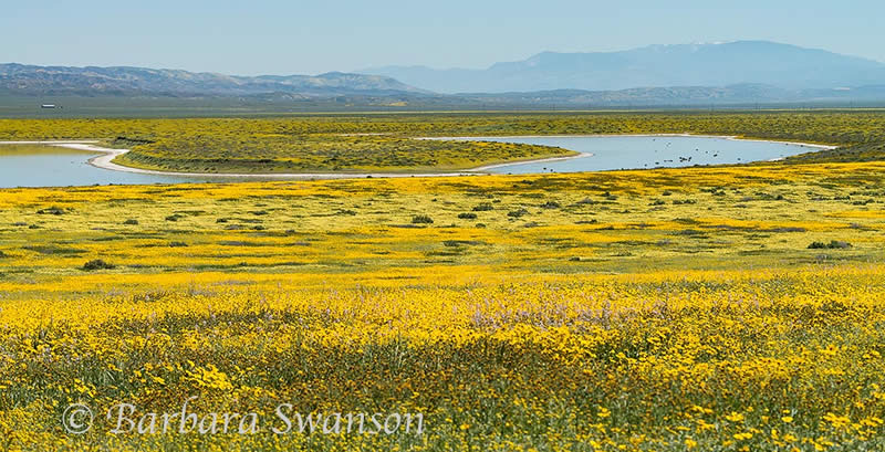 South Soda Lake, Carrizo Plain